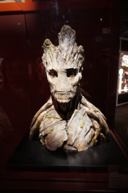 Real-life Groot!